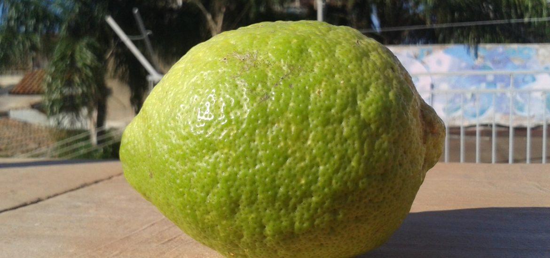 limone e desiderio