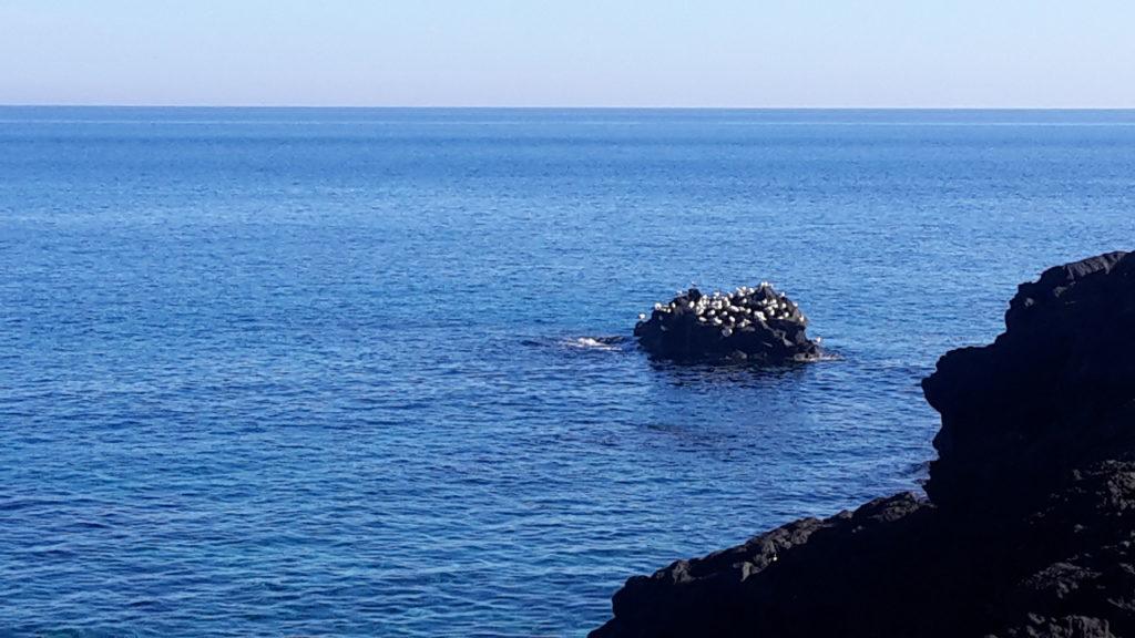 il mare semplicemente